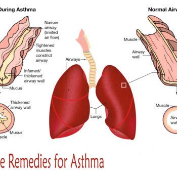 cara_mengobati_asma_secara_alami